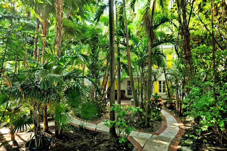 & Elegant Key West Tree House | 2 Bedroom Monthly Vacation Rental