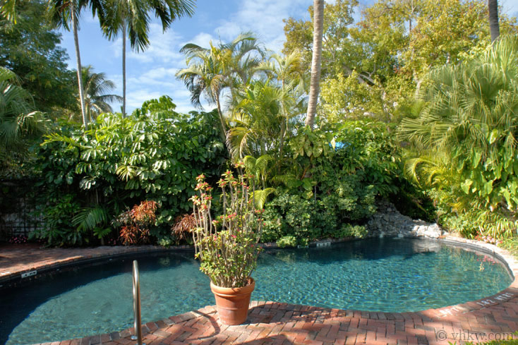 Tropical Tranquility 4 Bedroom Nightly Vacation Rental