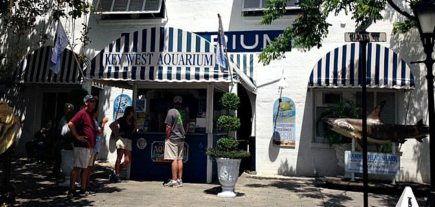 Entrance to the Key West Aquarium