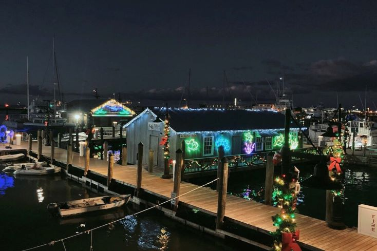 christmas lights decorated on the boat docks